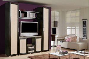 Мебель для гостиной - Гостиная «Ника» #2